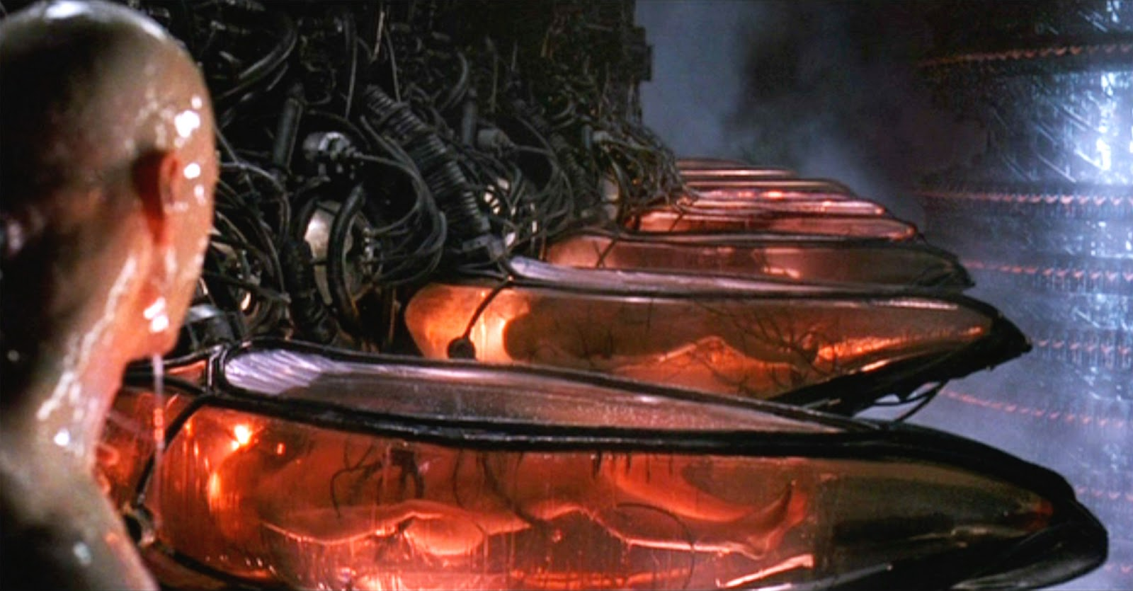 The Matrix Batteries